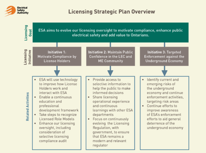 Licensing Plan Strategic Overview