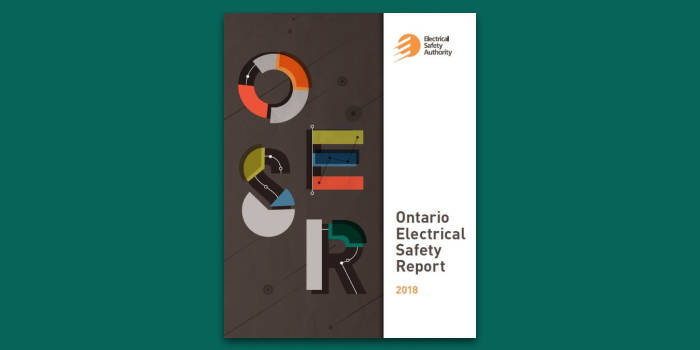 safety report publication