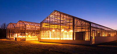 lighted greenhouse at dusk